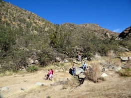 Wild Burro Hike Jan 21 077